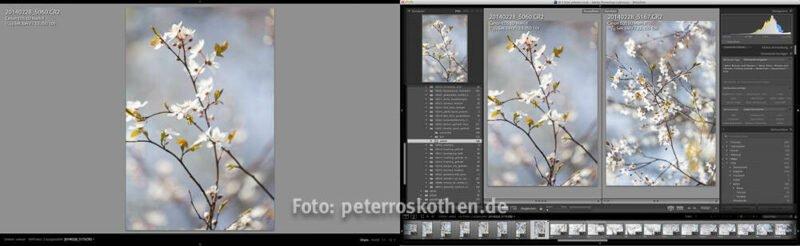 Lightroom Fotokurs Schulung