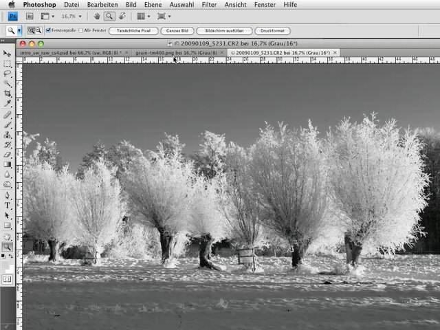 Schwarz Weiss Foto Aus Raw Mit Photoshop Cs Oder Cc – Fotoschulung Video