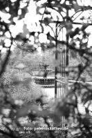 Testfotos Schwarzweiß Kamera Leica