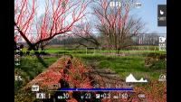 Fujifilm Hyperfokaldistanz für perfekte Schärfe