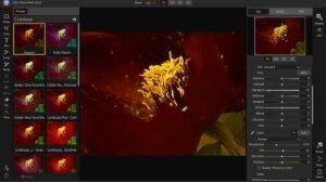 On1 Photo RAW kann Lightroom ersetzen