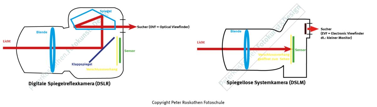 Digitale Spiegelreflexkamera / DSLR versus spiegellose Systemkamera / DSLM