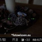 Sony RX100VA - Screenshot vom Sucher - Fokusfelder bis nahe am Rand des Bildes