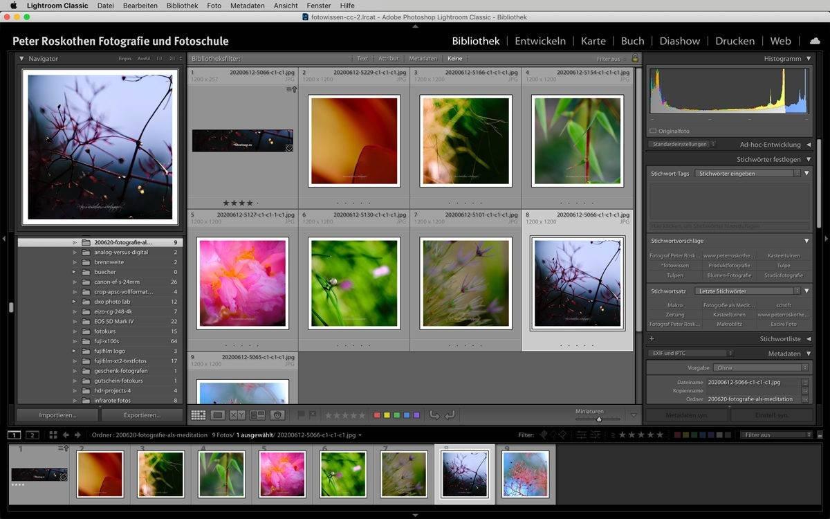 Bildbearbeitung / Fotoverwaltung Adobe Lightroom Classic