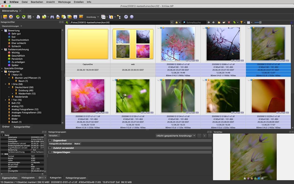 XnView MP Fotoverwaltung kostenlos