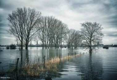 Hochwasser - Foto: Wilfried Klein - *fotowissen Bild der Woche
