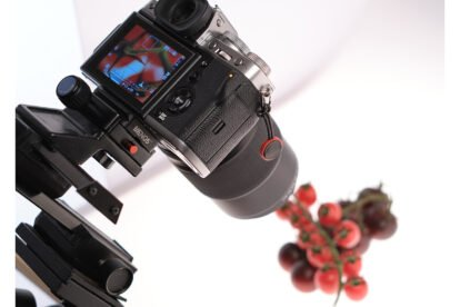 Making Of: Makrofoto auf dem Leuchttisch
