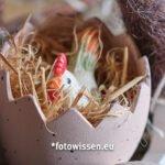 Makrofoto Beispiel Osterei - Online Fotokurs Einstieg in die Makrofotografie