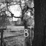 Testfoto Leica Q2 Monochrom 210426-5028